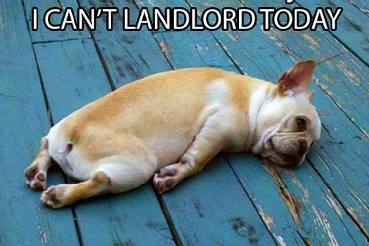 I can't landlord today
